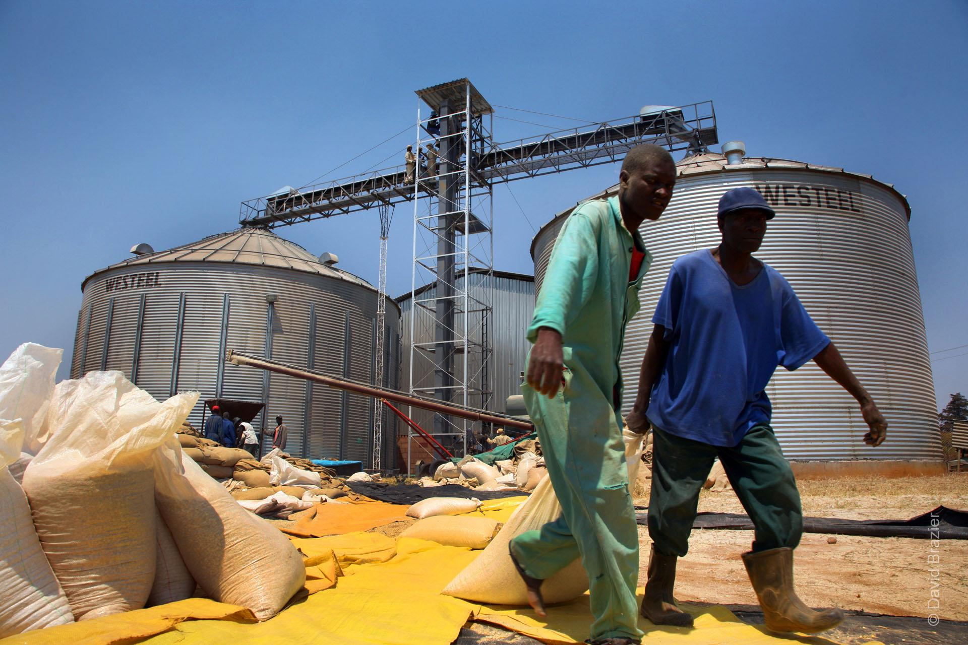 African workers dragging sacks of grain
